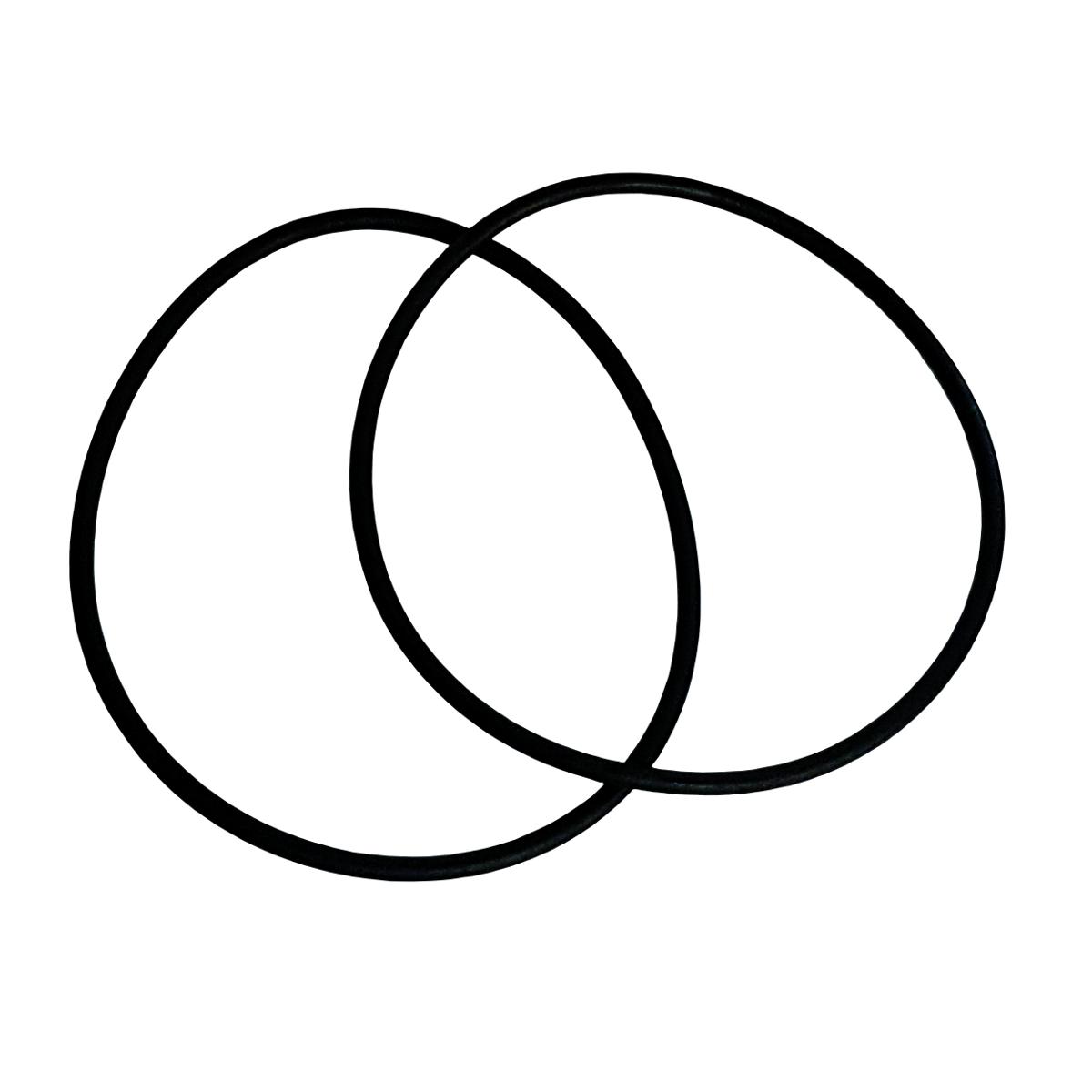 Joint de couvercle de filtre Corona, Aplister et Century | ASTRALPOOL